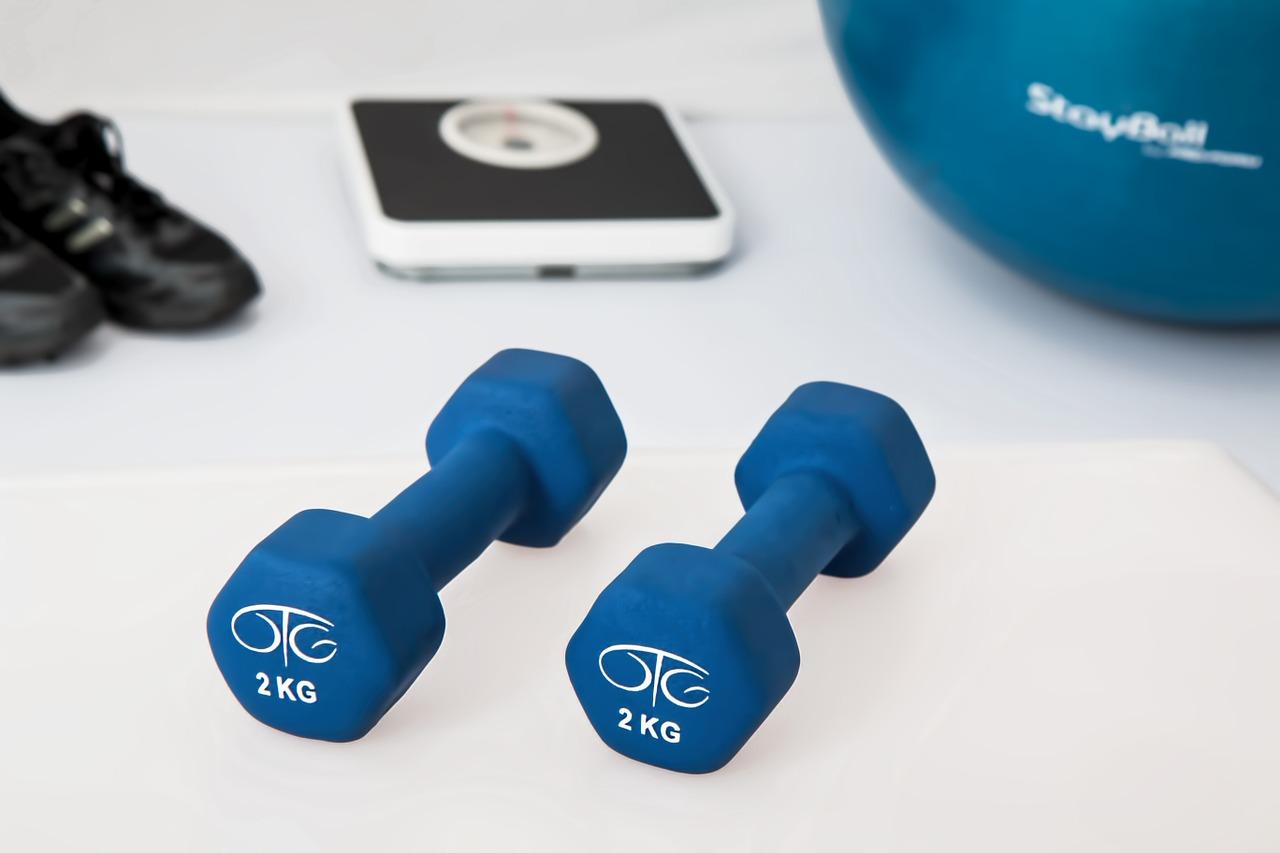運動単位とサイズの原理