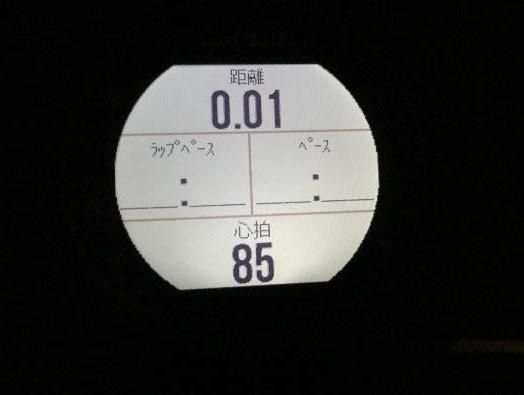 235Jを暗所で見る(バックライト付き)