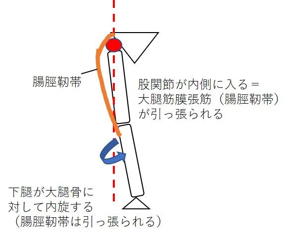 股関節の内転が腸脛靭帯に与える影響(前から見た図)