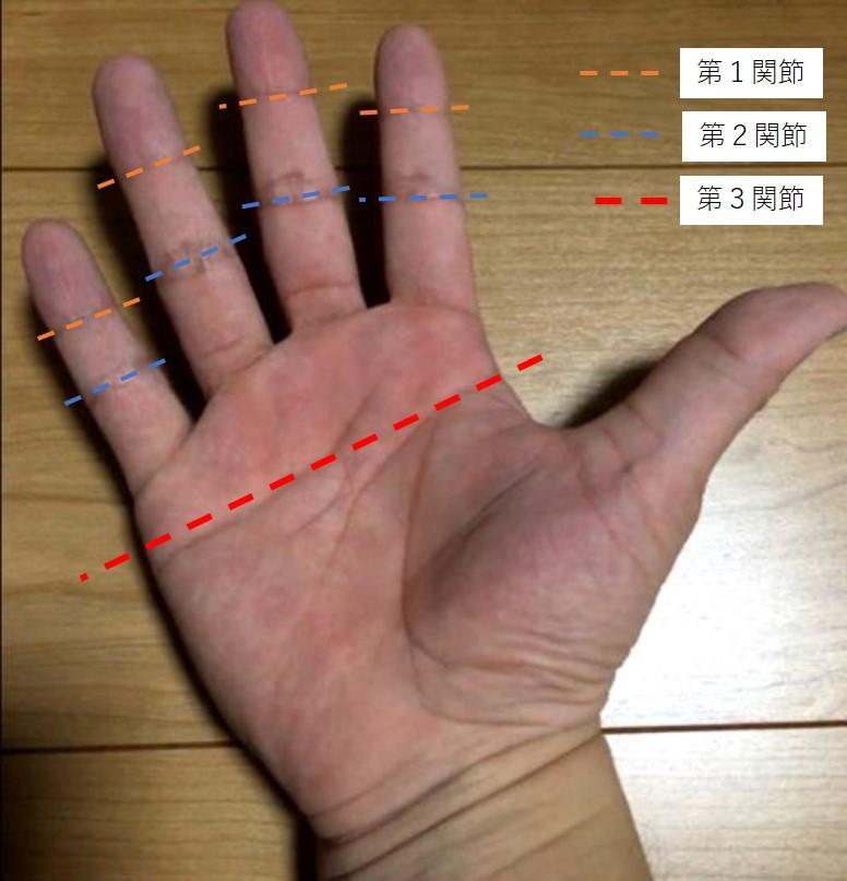 握力に使う筋肉