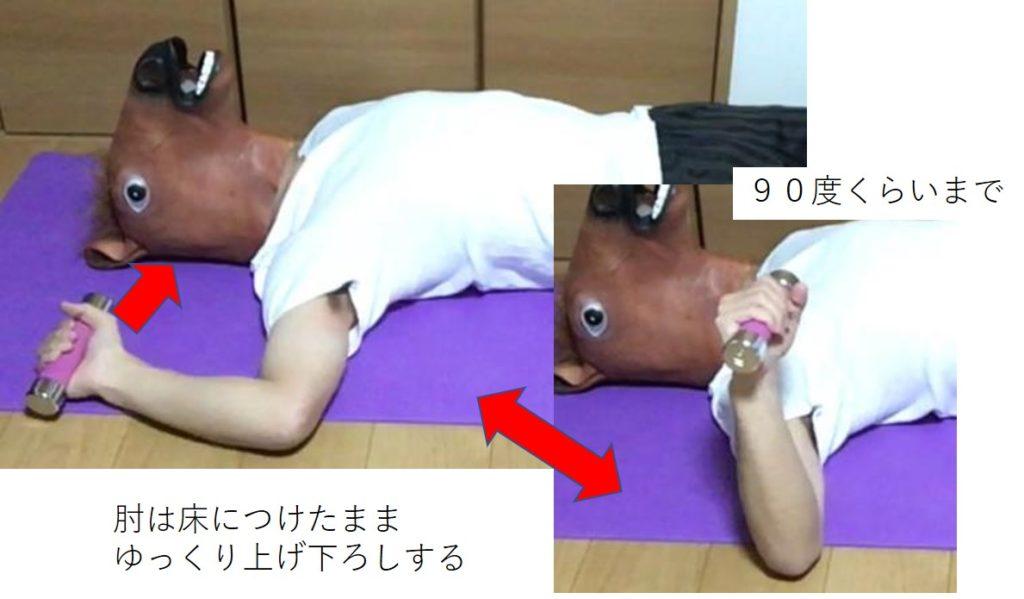 肩甲下筋のトレーニング